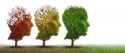 3 trees shaped as heads in various stages of leaf